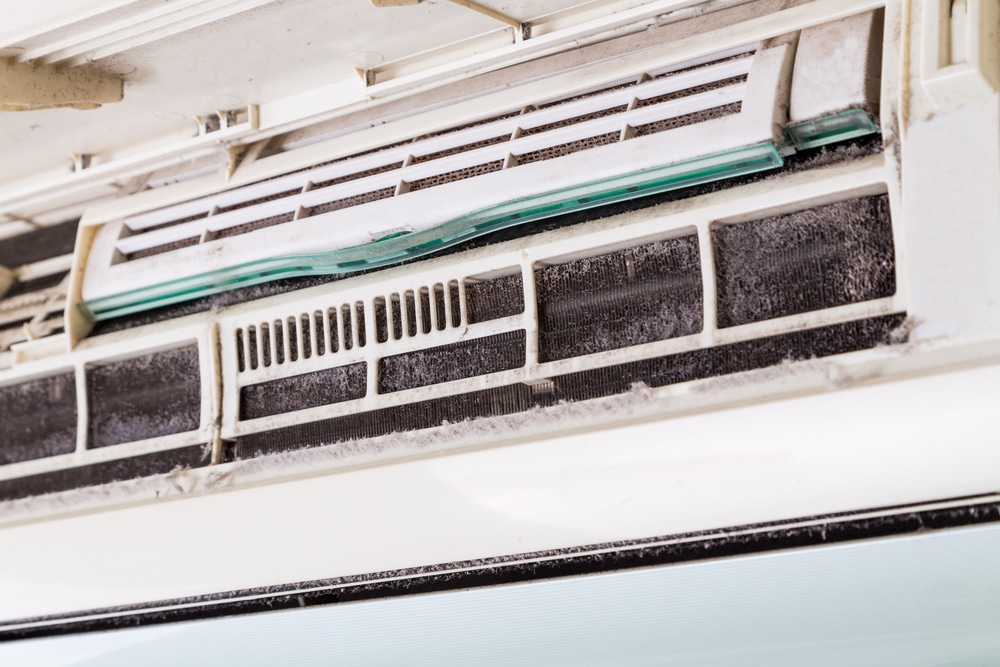 Home and HVAC Tips for Preventing Dust Mites
